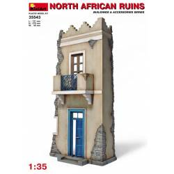 NORTH AFRICAN RUINS
