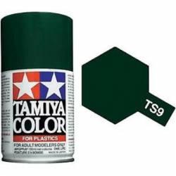 TS-1 Rouge brun bombe 100ml